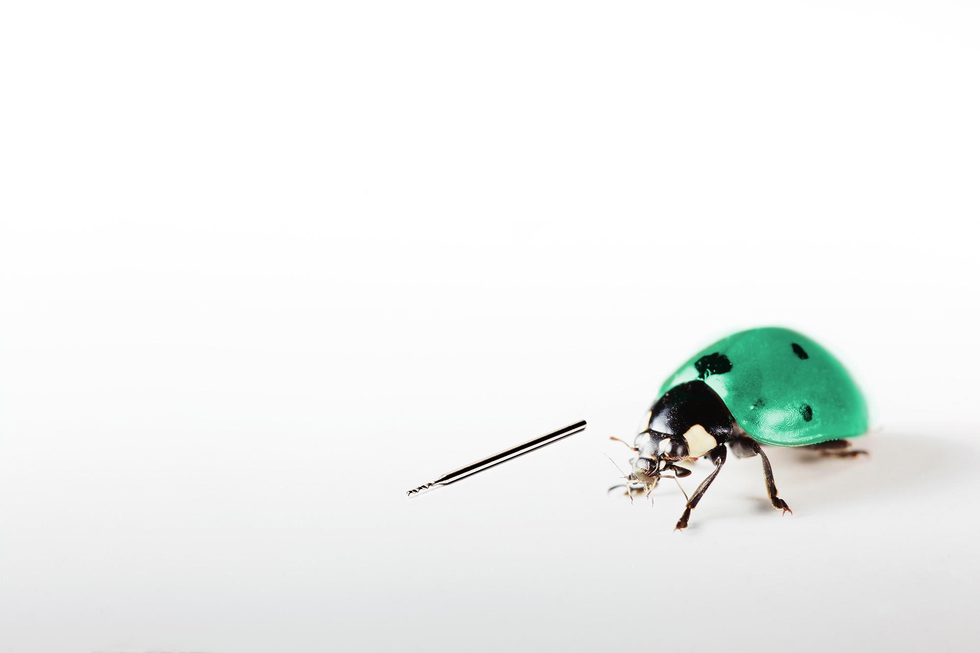 Micro Bohrer Hampp Tools Fotografie Tobias Ziegler für dasbomnm